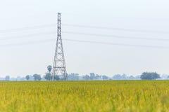 Elektrisk pol för hög spänning i risfält Arkivfoto