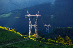 Elektrisk pol i natur Royaltyfri Fotografi