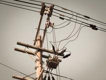 Elektrisk pol med elektriska transformatorer och elektriska kablar Arkivbilder