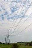 Elektrisk pol på risfält Royaltyfri Bild