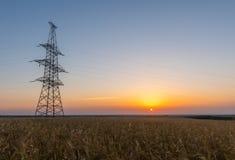 Elektrisk pylon på vetefält på soluppgång Royaltyfri Bild