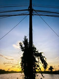 elektrisk stolpe Arkivfoto