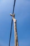 elektrisk tråd Royaltyfri Fotografi