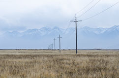 Elektriska linjer och pelare över slätten av övreTibet Royaltyfria Bilder