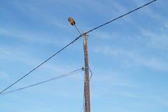 Elektriska poler av hög spänning i det vita molnet och blå himmel Royaltyfri Fotografi