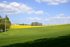Elektriska poler med ett grönt fält Royaltyfria Foton
