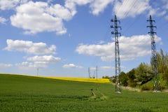 Elektriska poler med ett grönt fält Arkivfoton