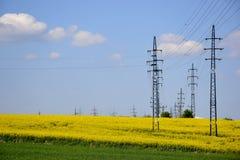 Elektriska poler med ett grönt fält Royaltyfri Foto