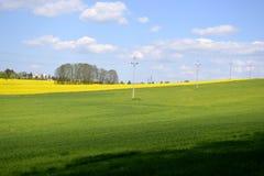 Elektriska poler med ett grönt fält Royaltyfri Fotografi