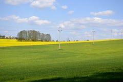 Elektriska poler med ett grönt fält Royaltyfri Bild