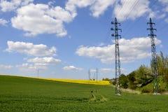 Elektriska poler med ett grönt fält Royaltyfria Bilder