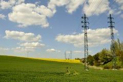 Elektriska poler med ett grönt fält Arkivbild