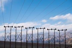 Elektriska poler och kablar med bakgrund för blå himmel i den Ladakh staden Royaltyfria Foton
