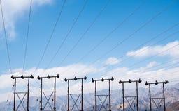 Elektriska poler och kablar med bakgrund för blå himmel i den Ladakh staden Arkivfoto