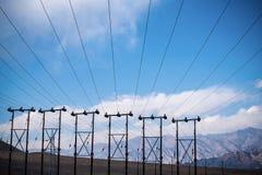 Elektriska poler och kablar med bakgrund för blå himmel i den Ladakh staden Fotografering för Bildbyråer