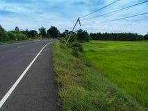 Elektriska vippande på parallella Poles längs vägen Royaltyfria Bilder