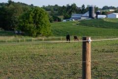 Elektriskt högt tänjbart staket royaltyfri foto