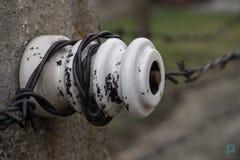 Elektriskt staket i Auswitz Arkivfoton