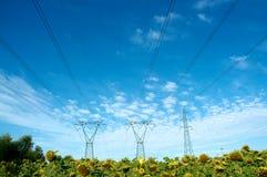 Elektrizität und Natur Stockbild
