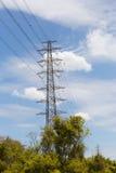 Elektrizitätsübertragungsmast und -niederlassung Stockfotografie