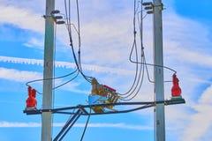 Elektrohoogspanningszekeringen stock afbeeldingen