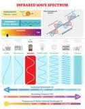 Elektromagnetiska vågor: Infrarött spektrum Vektorillustrationdiagram med våglängd, frekvens, harmfulness och vågstrukturen vektor illustrationer