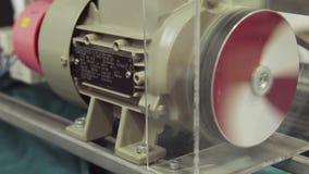 Elektromotor für Rotationsbewegungsgetriebe Pflanzenteil Maschinerie - schnellen spinnenden Elektromotor stock video