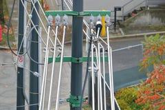 Elektronet in Stad Stock Afbeeldingen