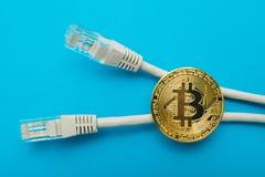 Elektroniska crypto valutabitcoin- och internetkontaktdon isoleras på en blå bakgrund royaltyfri fotografi