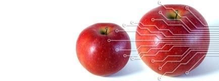 elektroniskt äpple Arkivbild