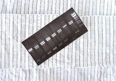 Elektrophoresebild auf einem zerknitterten DNA-Sequenz-Hintergrund Lizenzfreie Stockbilder