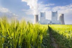Elektrownia I żyta pole Zdjęcia Stock