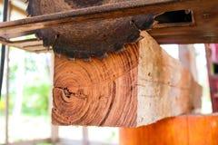 Elektryczna kurenda zobaczył tnącego drewno fotografia stock