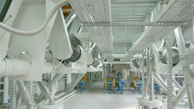 Elektryczna młyńska maszyneria dla produkci pszeniczna mąka Zbożowy wyposażenie zbiory