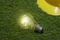 Elektryczna szklana żarówka na trawy tle Pomysł twórczości concep fotografia stock
