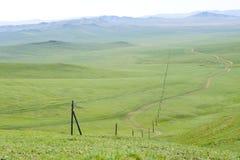 elektryczna zielona lina step Zdjęcie Royalty Free