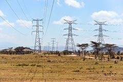 Elektryczne przekaz linie Kenja Obraz Royalty Free