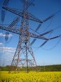 Elektrycznego drutu wierza w żółtym gwałta polu Obraz Royalty Free