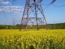 Elektrycznego drutu wierza w żółtym gwałta polu Zdjęcie Royalty Free