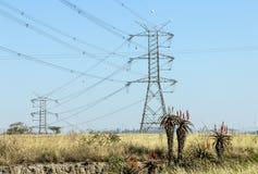 Elektryczni Powerlines i pilony na zima krajobrazie obraz royalty free
