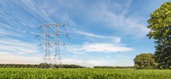 Elektryczność kable w rolniczym krajobrazie z i pilony obrazy royalty free