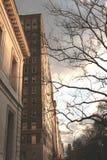 Elektryczność między naturą i budynkiem obraz royalty free