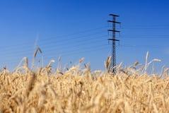 elektryczność wykłada przekazy Zdjęcie Stock