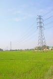 elektryczności pola poczta ryż Fotografia Stock
