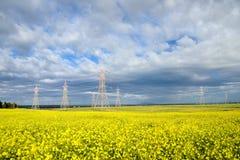 Elektryczny koloru żółtego pole Fotografia Stock