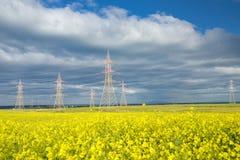 Elektryczny koloru żółtego pole Obrazy Royalty Free