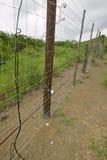 Elektryczny ogrodzenie Siyakwemukela Hluhluwe Umfolozi gry rezerwa, Południowa Afryka Fotografia Stock