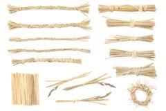 Elelments od suchej trawy dla graficznego projekta Fotografia Royalty Free