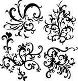 Eleme ornamentale di disegno di vettore Fotografie Stock