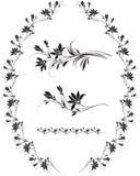 elementów kwiatów ramowy setu wektor Fotografia Royalty Free